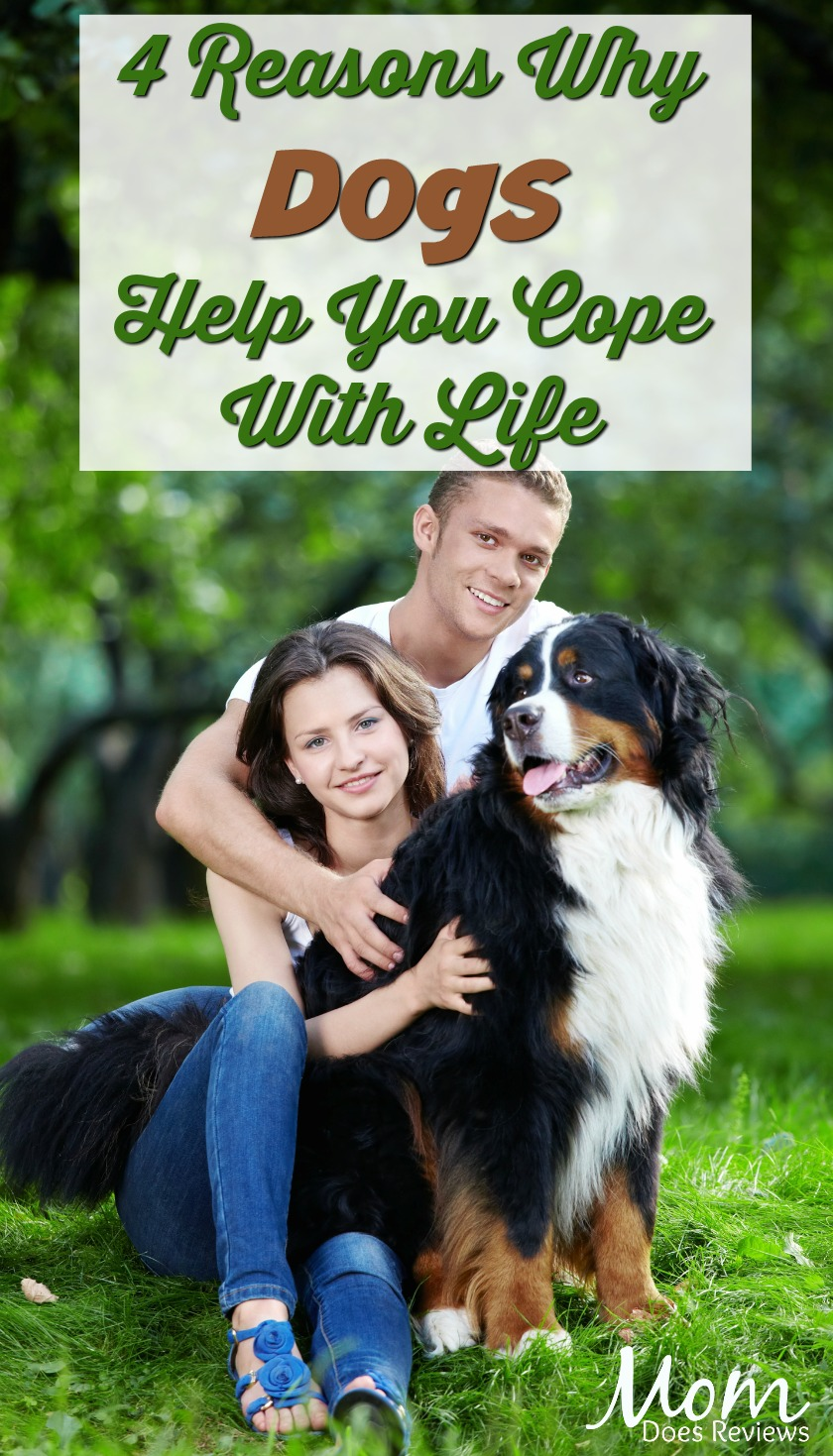 4 Reasons Why Caring For A Dog Helps You Cope With Life #pets #dogs #coping