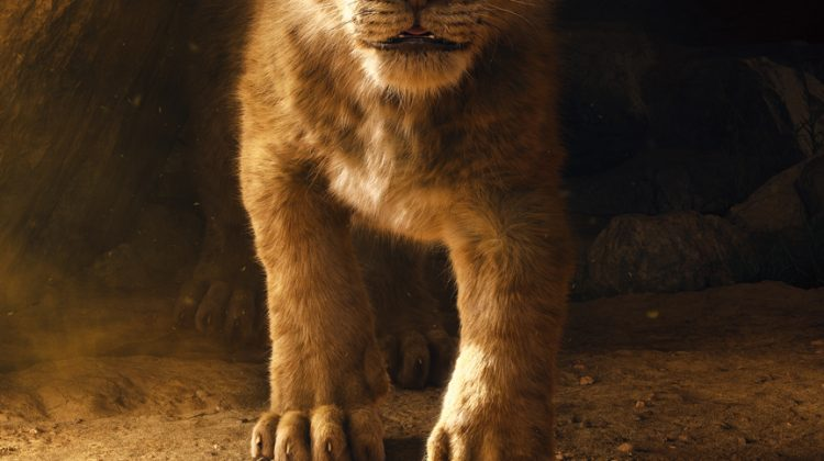 THE LION KING Teaser Trailer & Poster is HERE!! #TheLionKing