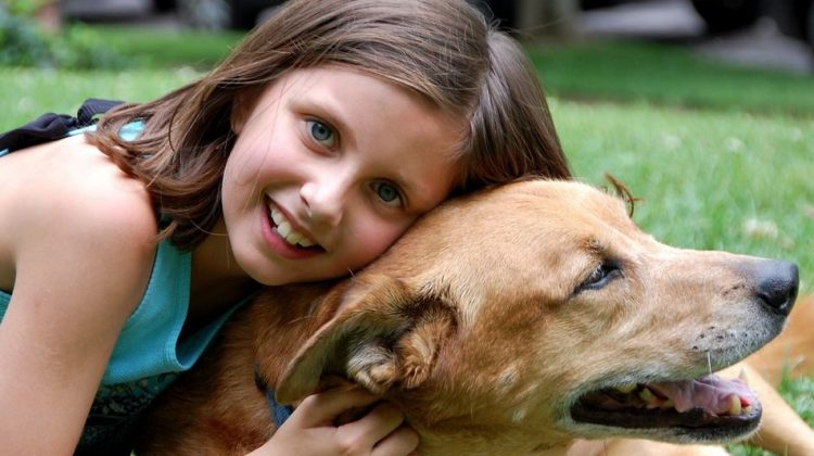 Kids and Canines: Teaching Your Child How to Interact with Dogs