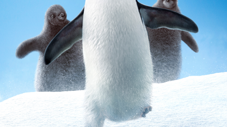 PENGUINS (Disneynature) #DisneynaturePenguins
