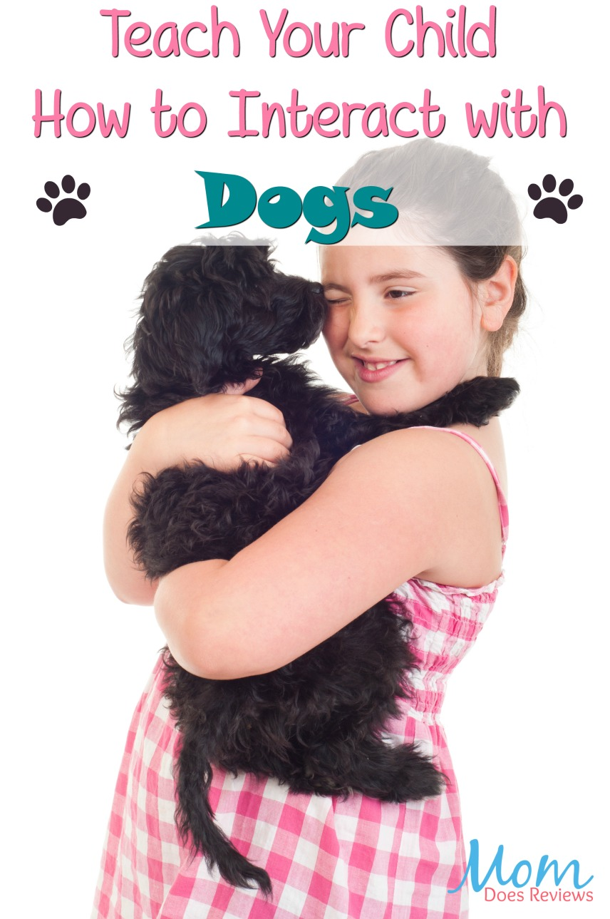 Kids and Canines: Teaching Your Child How to Interact with Dogs  #pets #parenting #dogs #kids