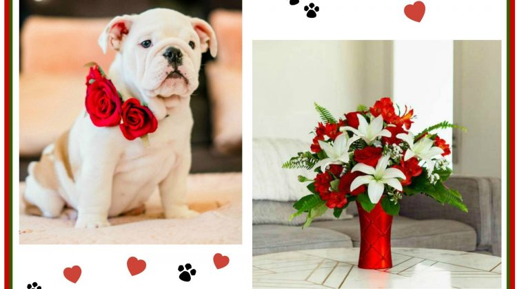 Win a $75 Teleflora Gift Code for Valentine's Day- HURRY, ends 2/10 at 8p!