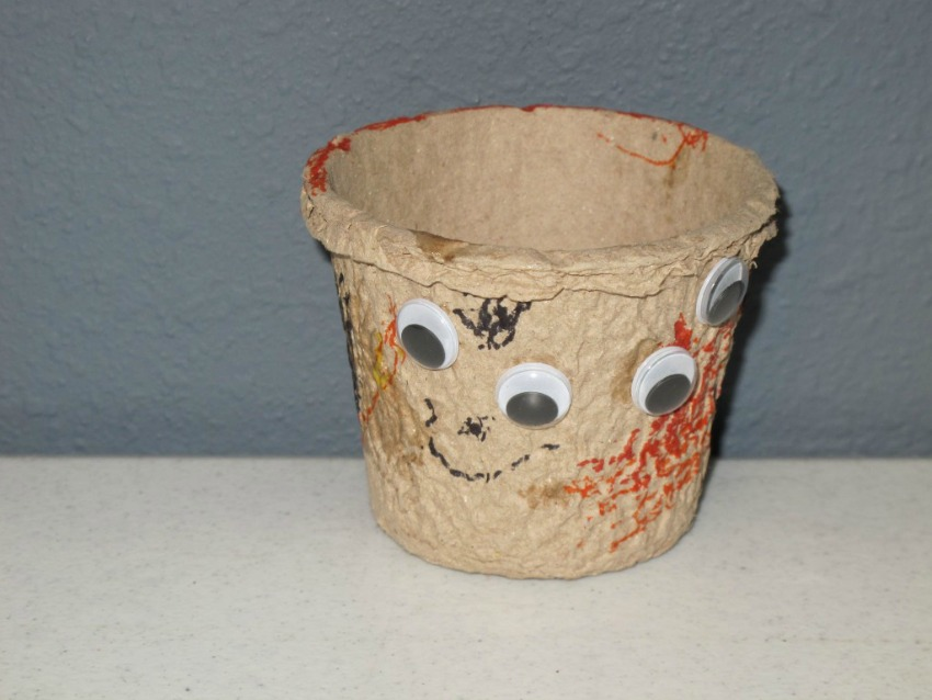 DYI Seed Pots