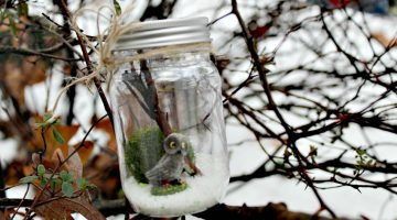 Dollar Store DIY: Whimsical Woodland Creature Terrarium