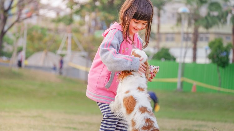 Should you Keep Children Away From a Flea-Infested Pet?