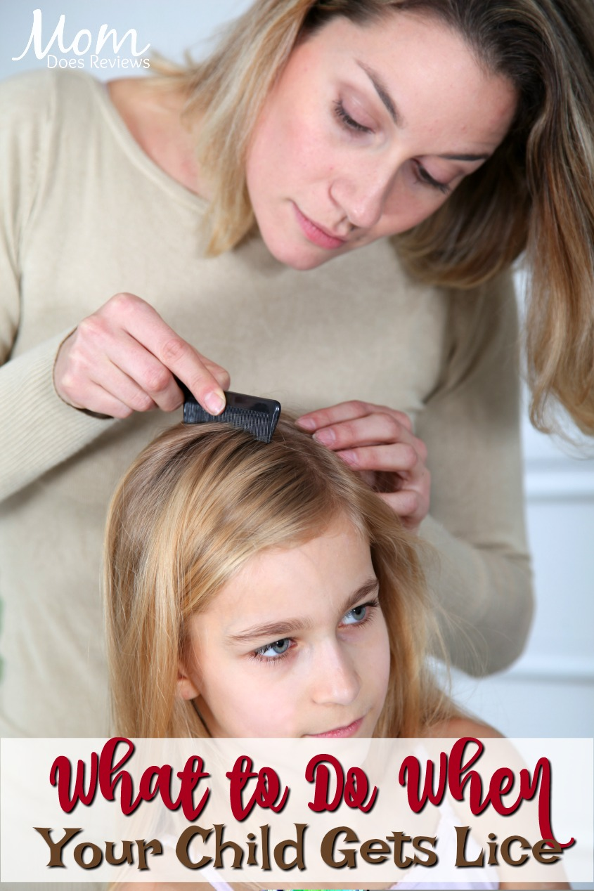 What to Do When Your Child Gets Lice #health #parenting #headlice #lice