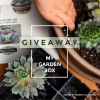 Win My Garden Box