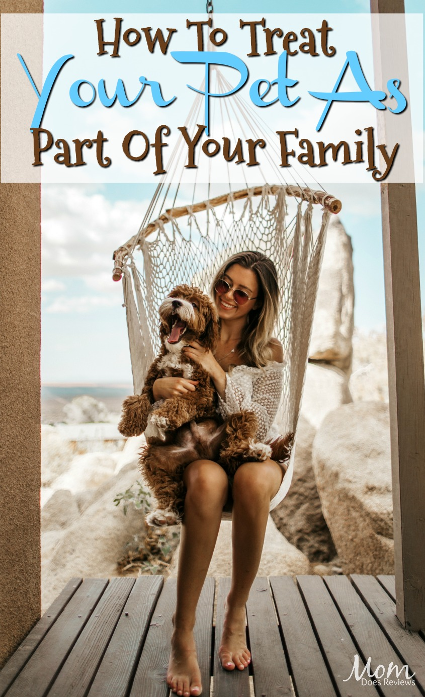 How To Treat Your Pet As A Significant Part Of Your Family #pets #dogs #family #love #doglove