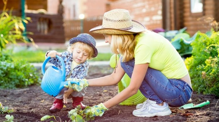 Tips for Making Your Yard Safer for Young Children and Pets