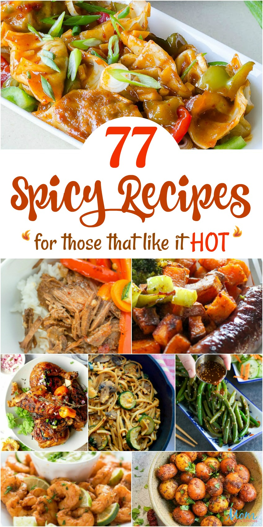 77 Spicy Recipes for Those that Like it Hot #RECIPES #foodie #spicyfood