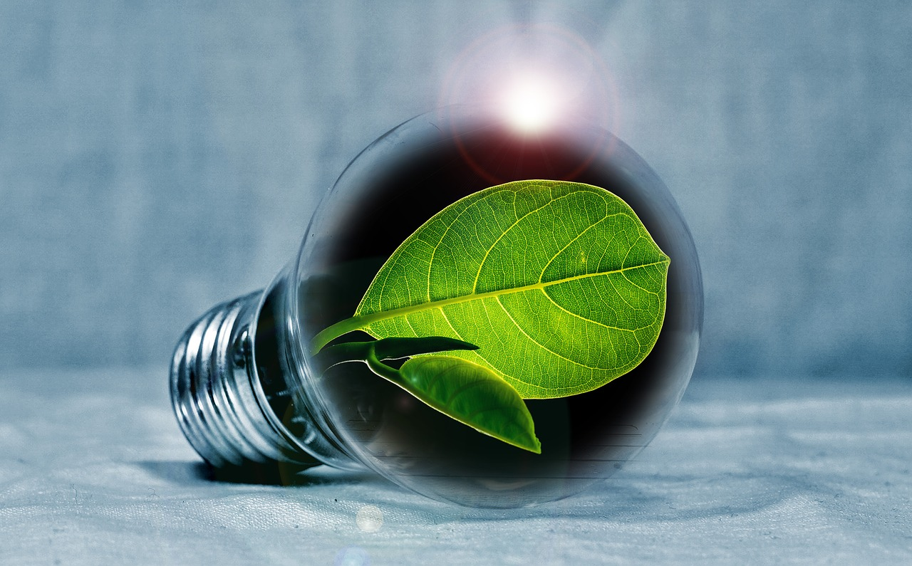 5 Ways to Reduce Your Energy Output in Your Home
