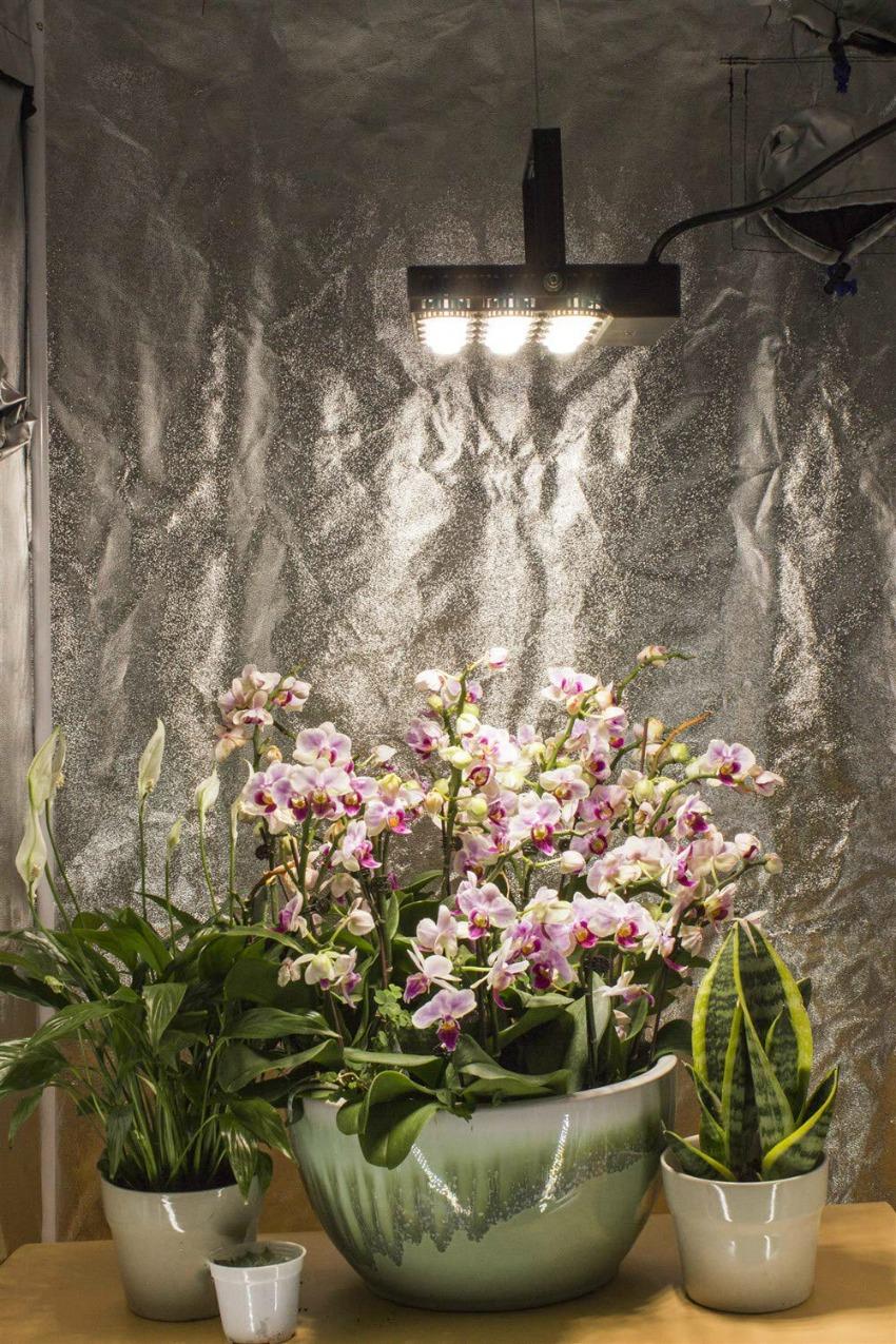SANSI 70W LED Grow Light