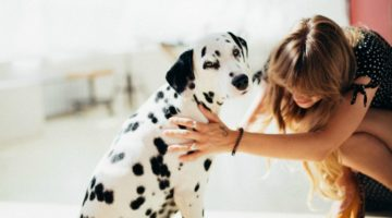 How Do You Make Sure Family Pets Stay Healthy?