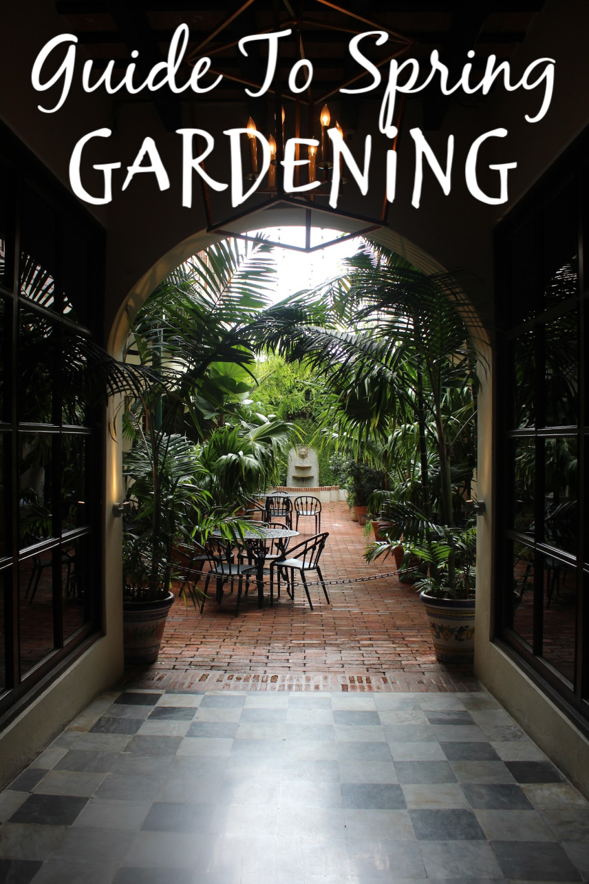 Guide To Spring Gardening Possibilities