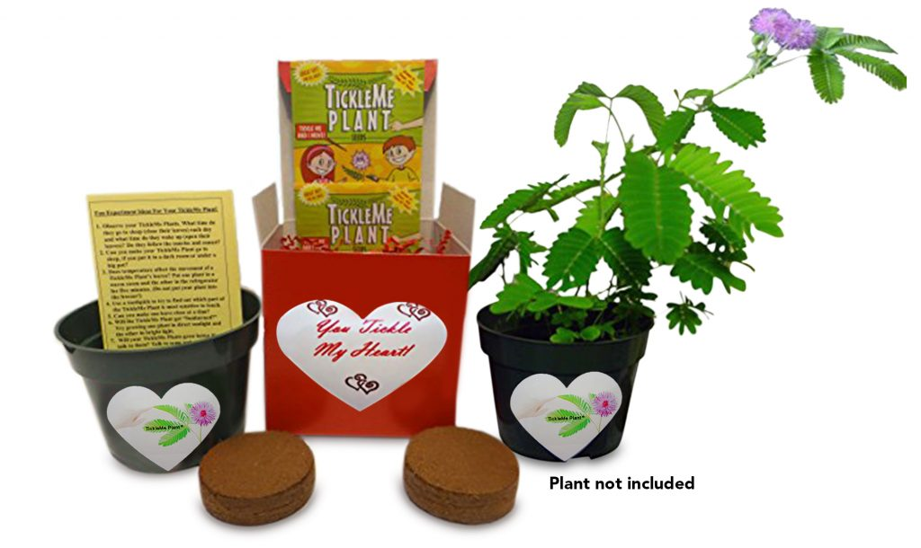 Multi-Prize HUGE Valentine's Day Giveaway! US, ends 2/10