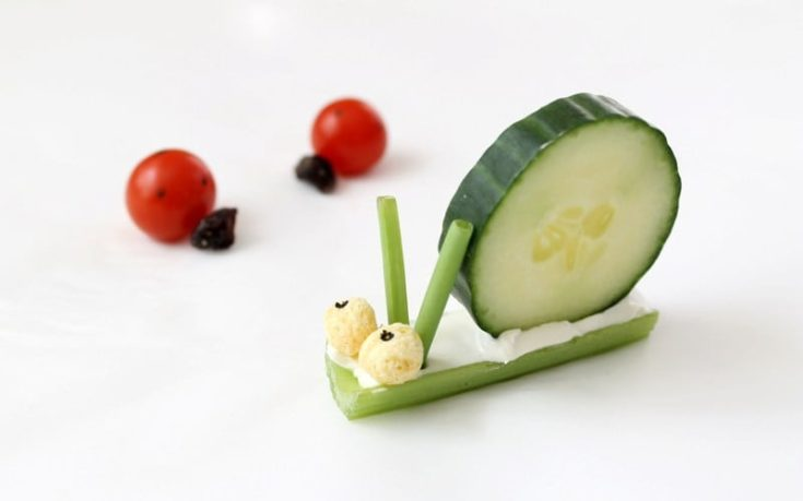 Simple Vegetable Bugs