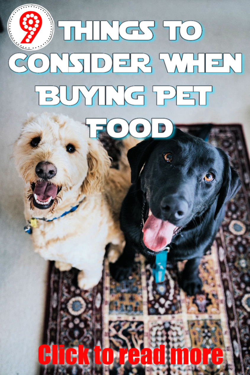 9 Things To Consider When Buying Pet Food