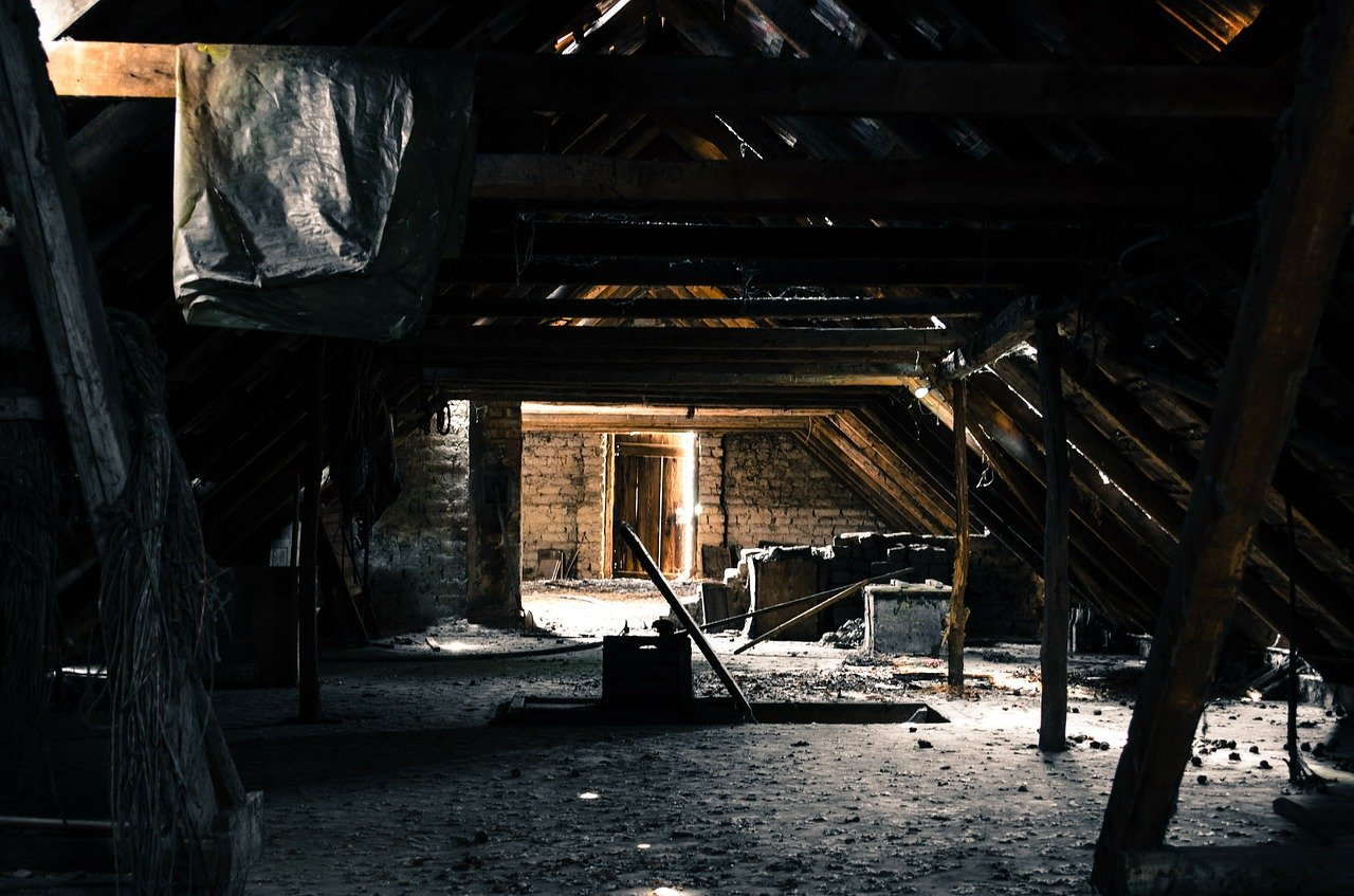 COMBAT THE FLU by Fixing Leaky Roofs and Fighting Attic Mold