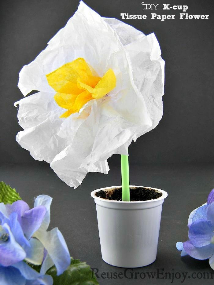 DIY: K-cup Tissue Paper Flower