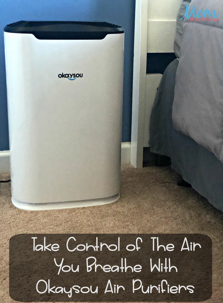 Take Control of The Air You Breathe With Okaysou Air Purifiers