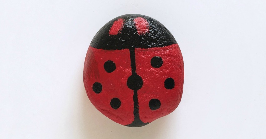 Stone Ladybug Coloring Craft for Kids process