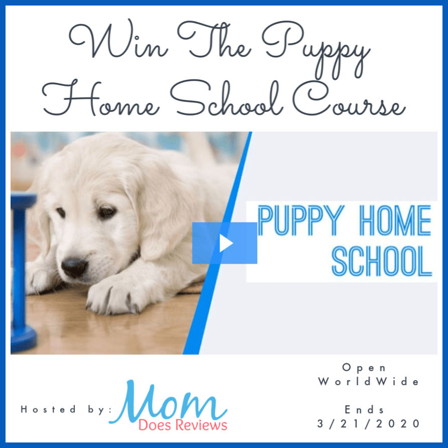 Win The Puppy Home School Course