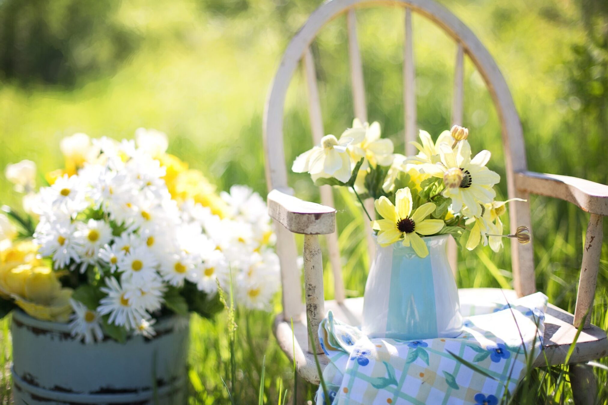 Garden Projects to Create Your Ideal Outdoor Space