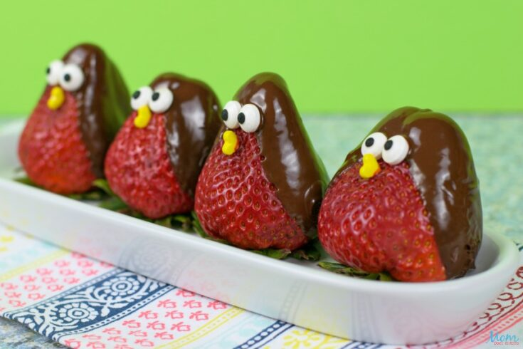 Fun & Yummy Chocolate Strawberry Birds How-to!