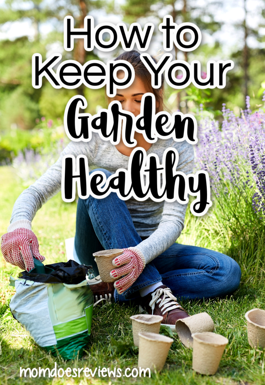 9 Smart Ways of Keeping Your Home's Garden Healthy