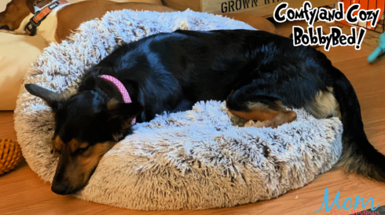Comfy and Cozy Bobbybed for pups