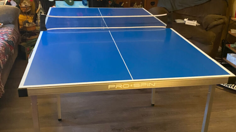 ProSpinSports #PingPongTable #FamilyFun