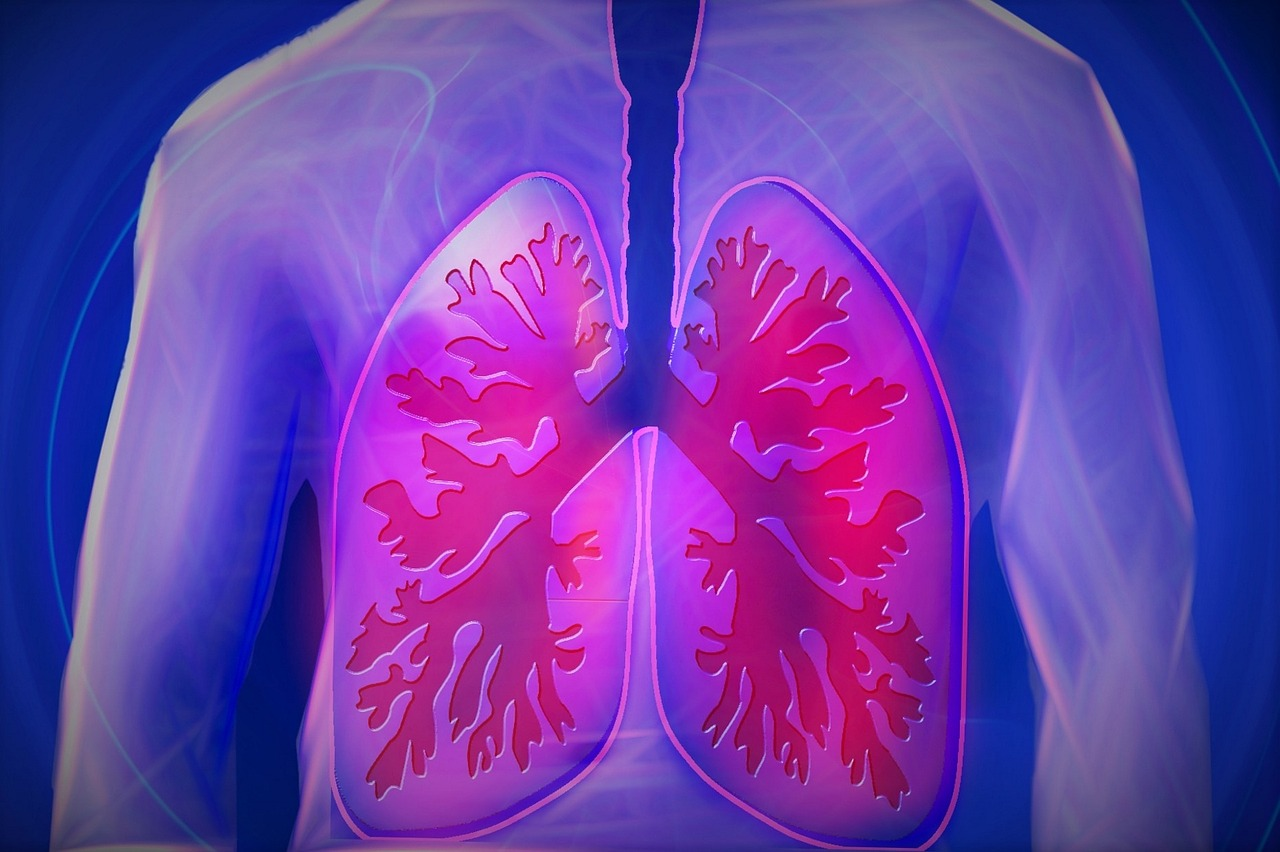Common Lung Problems and How to Avoid Them