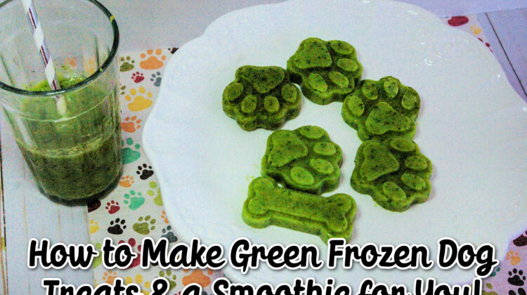 Green dog treats and smoothie