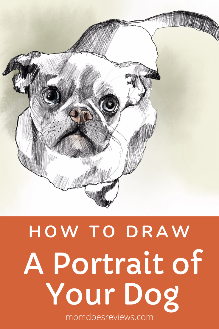 How to Draw a Portrait of Your Dog
