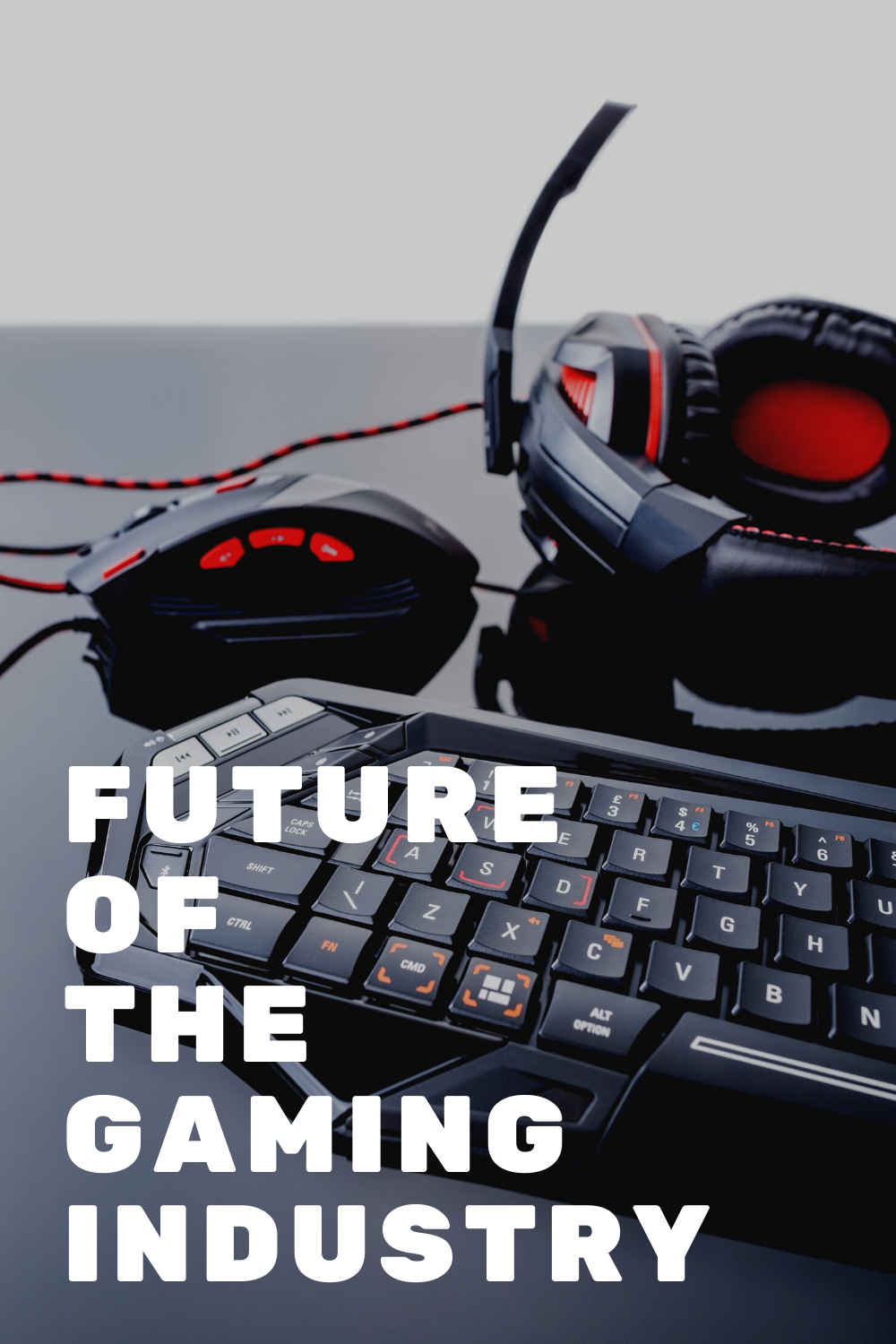 The Future of Gaming Industry and Its State