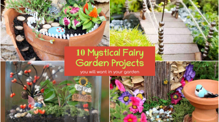 10 Mystical Fairy Garden Projects You Will Want in Your Garden