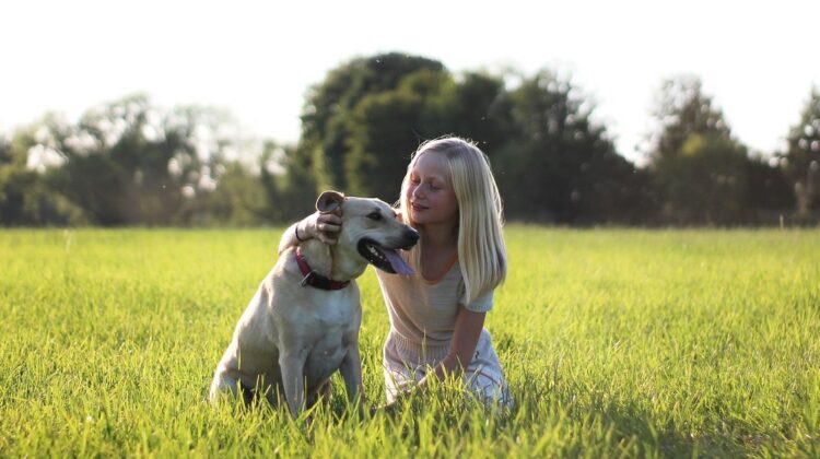 Why Dogs and Small Children Should Never Be Left Alone