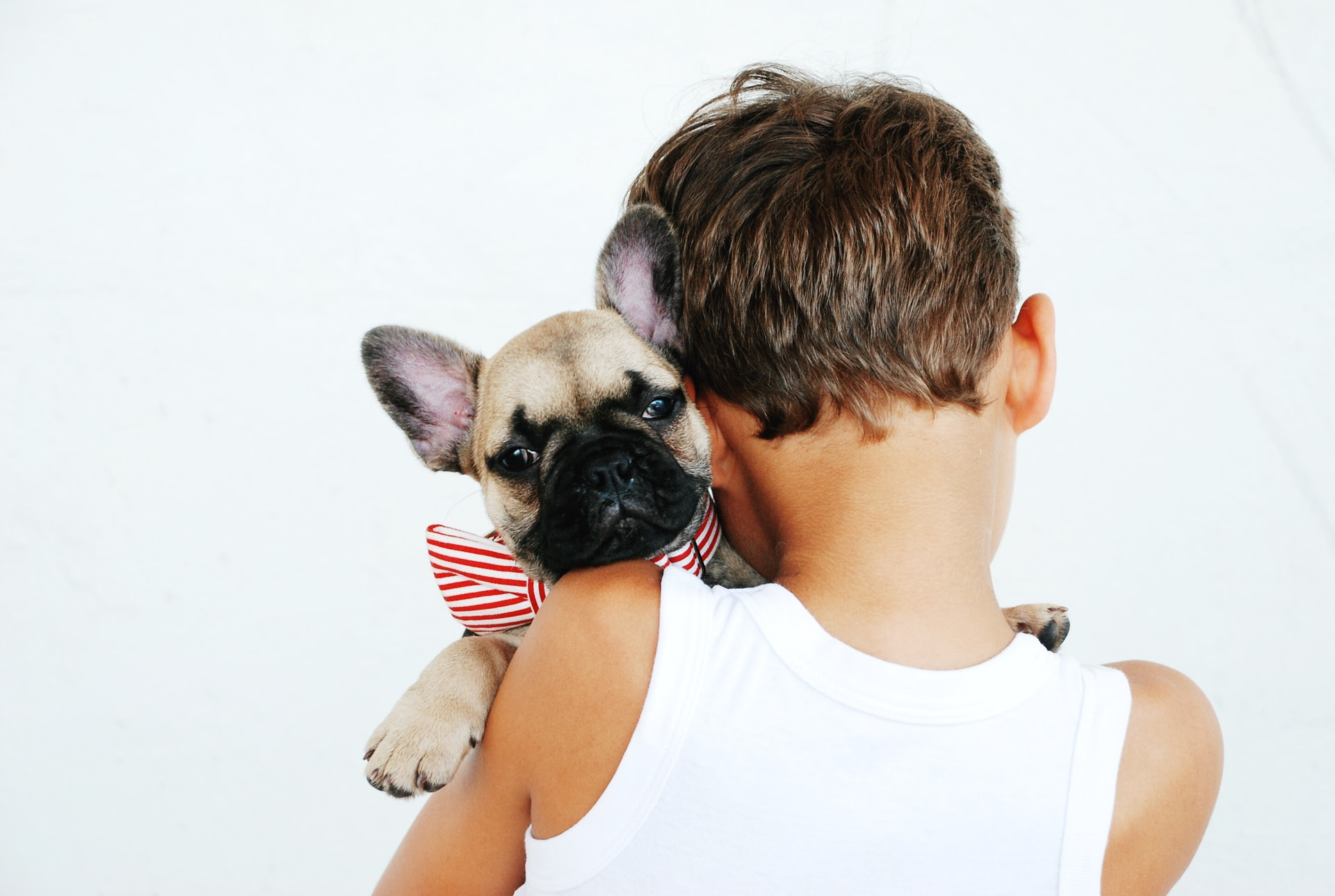 A Child's Best Friend: Choosing and Taking Care of a Family Dog
