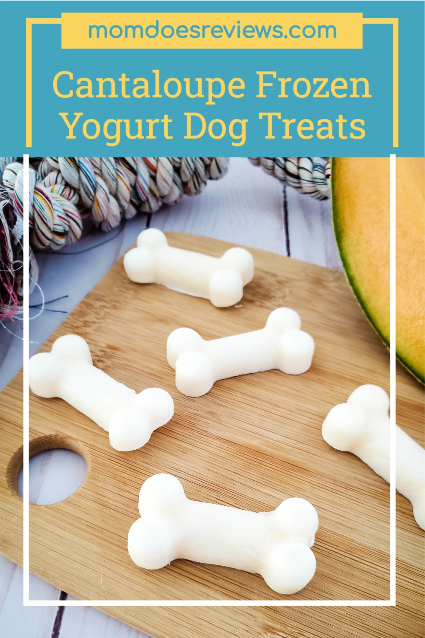 Cantaloupe Frozen Yogurt Dog Treats #Recipe #pettreats #frozentreats