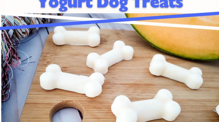 Cantaloupe Frozen Yogurt Dog Treats Recipe