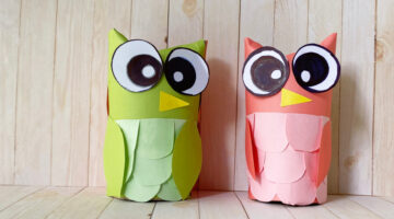 Toilet Paper Owl Craft for Kids