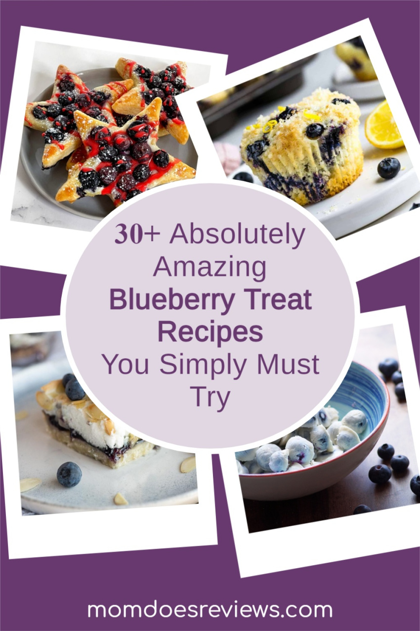 30+ Absolutely Amazing Blueberry Treat #Recipes You Simply Must Try #sweets #desserts