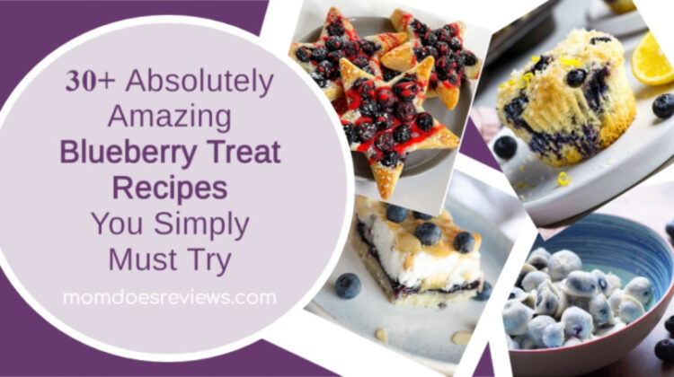 30+ Absolutely Amazing Blueberry Treat Recipes You Simply Must Try